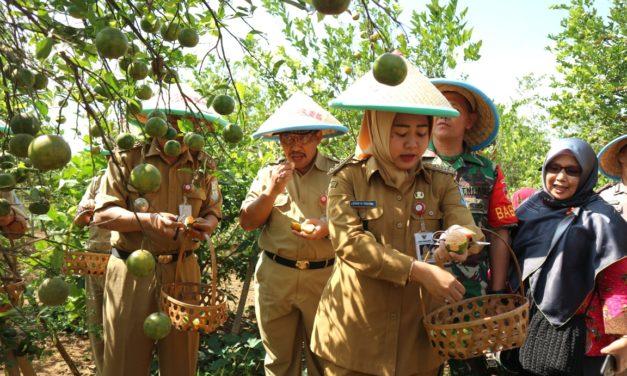 Bogar Salah Satu Icon Pariwisata di Bukateja